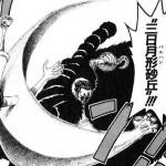 悪魔の実図鑑 15ページ 【スナスナの実】