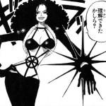 悪魔の実図鑑 19ページ 【トゲトゲの実】