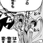 悪魔の実図鑑 71ページ 【ヒラヒラの実】
